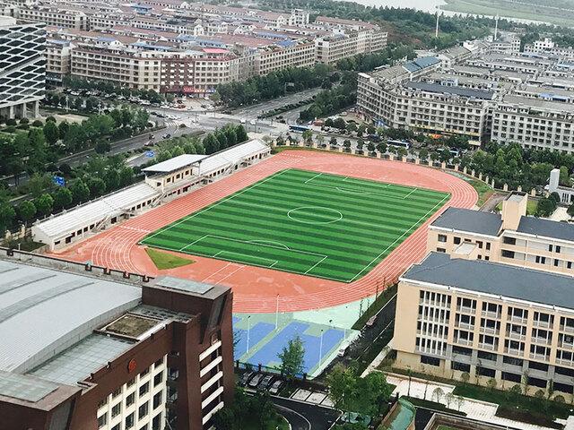 湖南省长沙市特立中学人造草坪案例