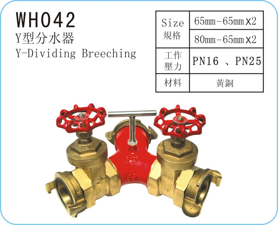 WH042 Y-Type Strainer