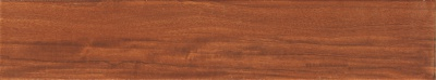 M158003加州红柚