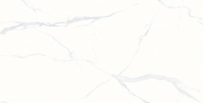 612TB116R-段光 梵迪白