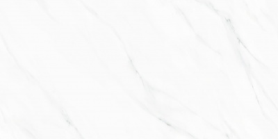 715KL141R-段光-欧颂白