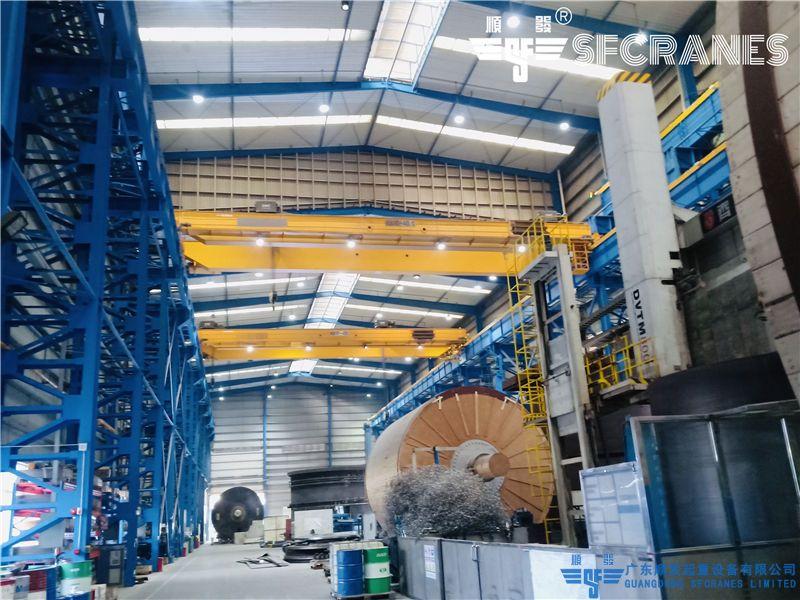 安德里茨(中國)有限公司-QDO型雙梁天車+QE型雙梁行車
