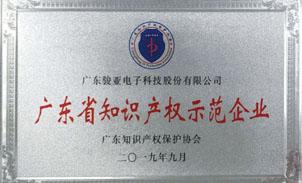 廣東省知識產權示范企業