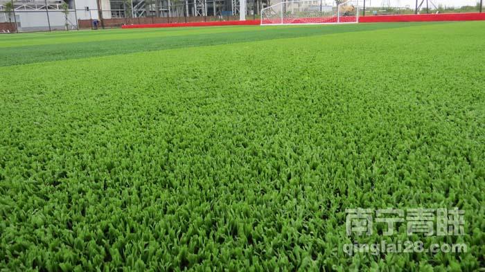 广西11人制人工草坪足球场