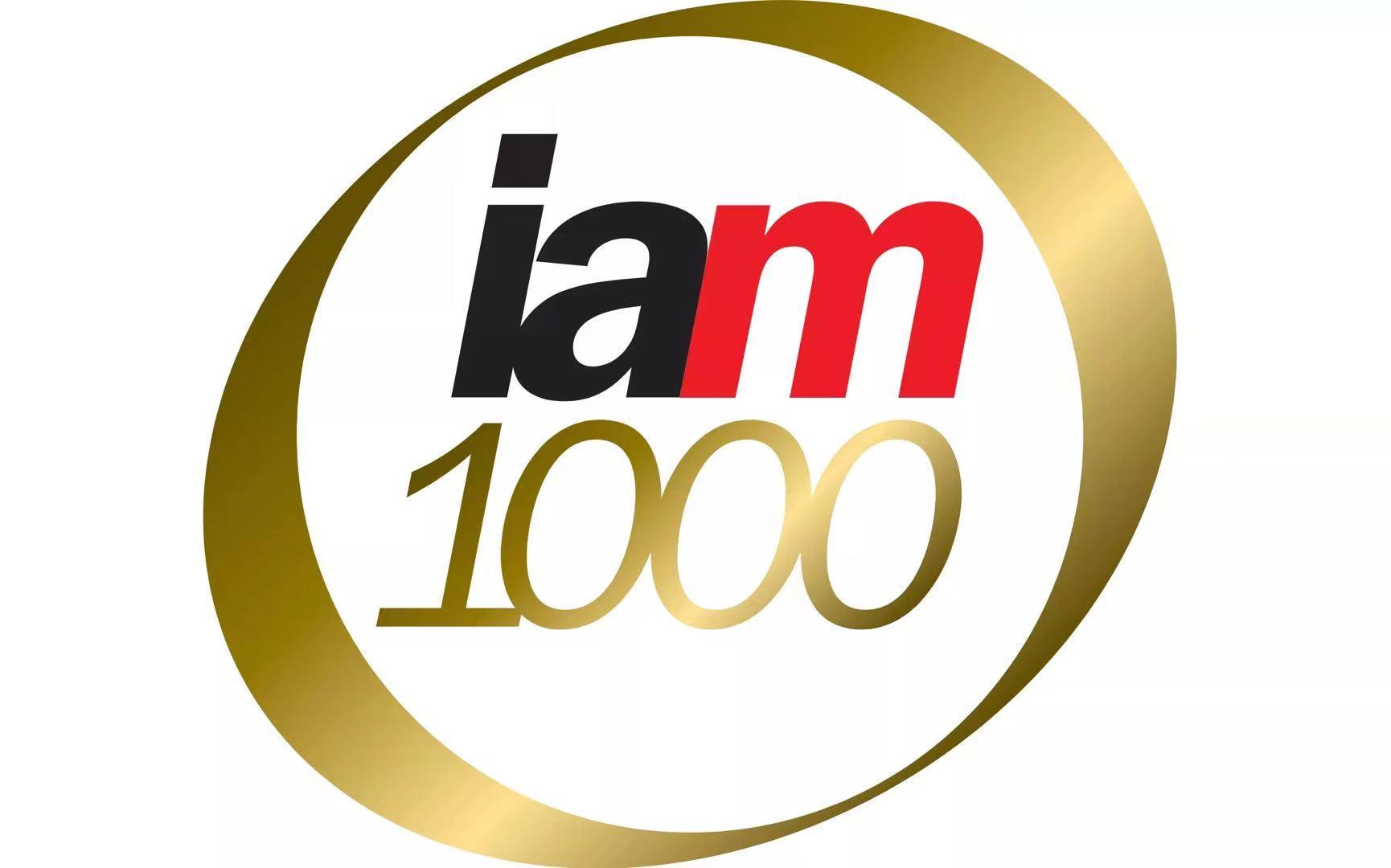 汇知杰(IP March)再次入选IAM全球专利1000强