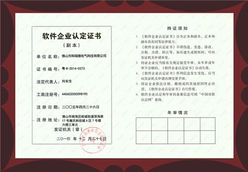 软件企业认定证书(副本)