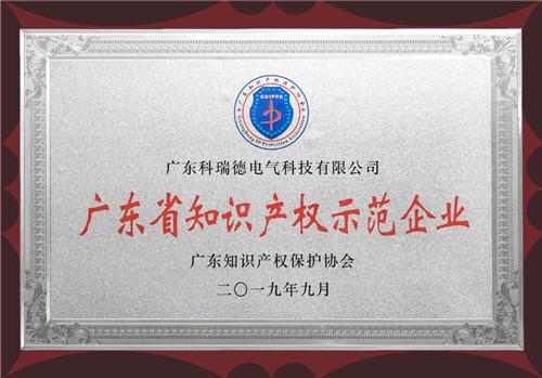 广东省知识产权示范企业