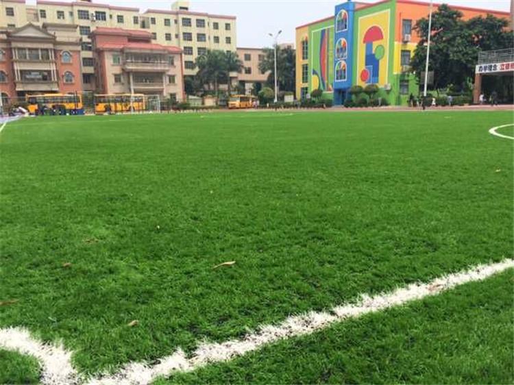 人造草坪案例