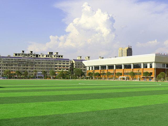 长沙百熙中学人造草坪案例