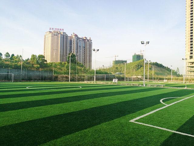 广西省防城港市埠上桃源足球俱乐部人造草坪