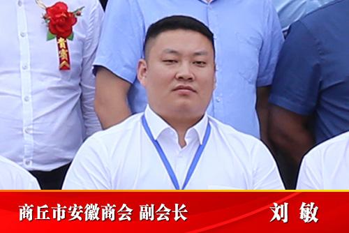 商丘市安徽商会副会长  刘敏