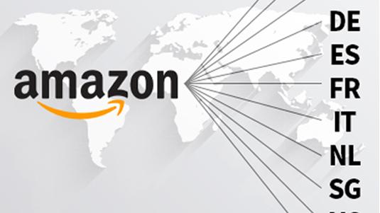 Amazon store / AliExpress store link