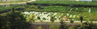三明市三元区中村乡农村环境综合整治项目
