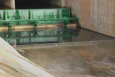 治理黑臭水体的微生物反应装置