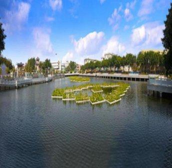 河道水系的微生物增氧装置