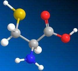 谷胱甘肽的生理功能