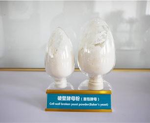 破壁酵母粉(面包酵母)