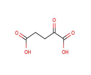 α-酮戊二酸