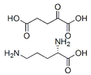 L-鸟氨酸 Alpha-酮戊二酸 (1:1)