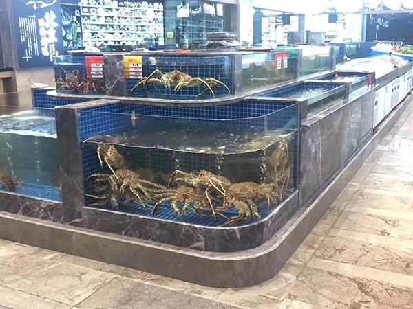 鲜活海鲜池