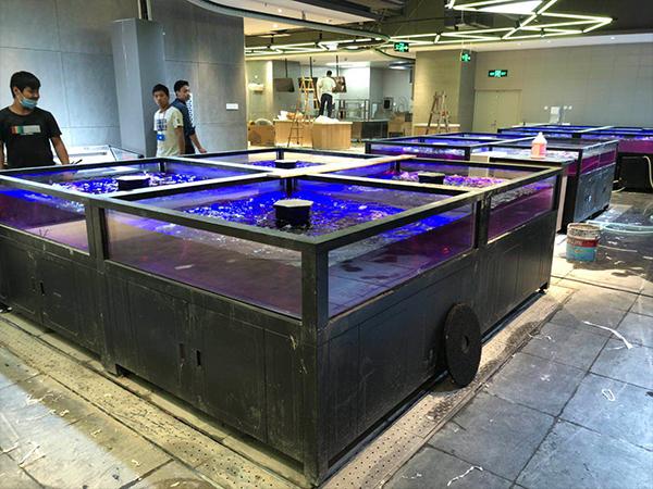 移动海鲜鱼缸