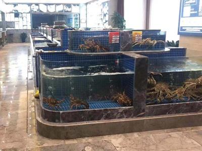 福州金源国际大饭店海鲜池完成