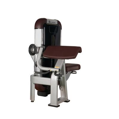 LK-8812二頭肌訓練器