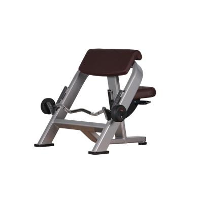 LK-8838二頭肌訓練椅