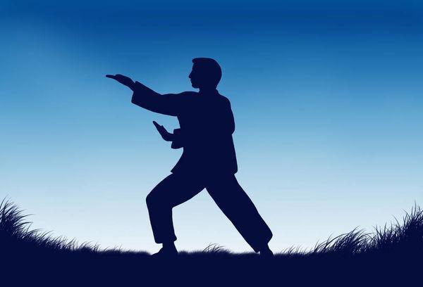 圆灵居士演练传统武术之形意拳