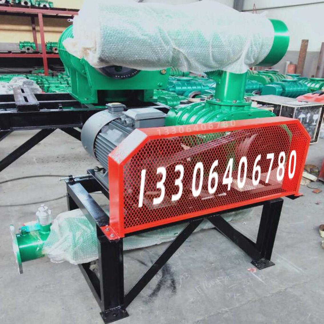 罗茨鼓风机HLSR300MJ密集型