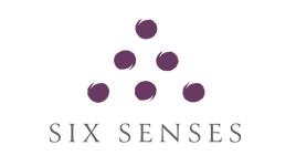 THE SIX SENSES