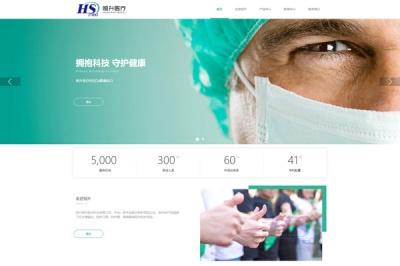 四川恒升医疗科技有限公司品牌网站建设