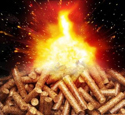 松木颗粒燃料-山东生物质颗粒燃料厂家-松木颗粒价格