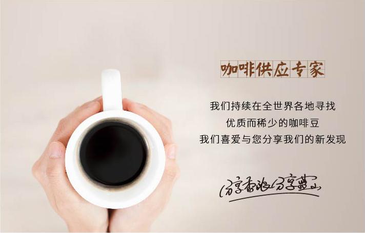 咖啡供應專家
