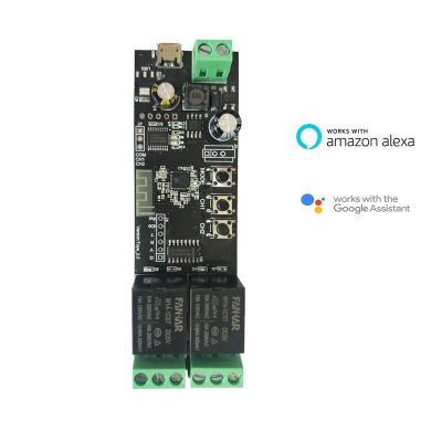 WiFi 2CH Smart Relay