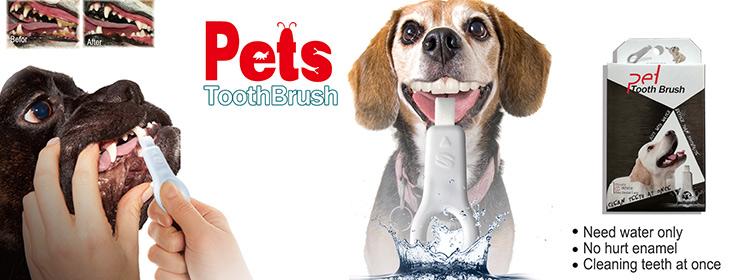 新型宠物用品 狗用洁牙擦 牙齿清洁护理 宠物洁牙擦