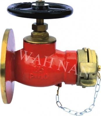 WH046直通法蘭消火栓