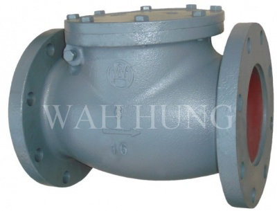 WH030 Grey Iron Swing Check Valve