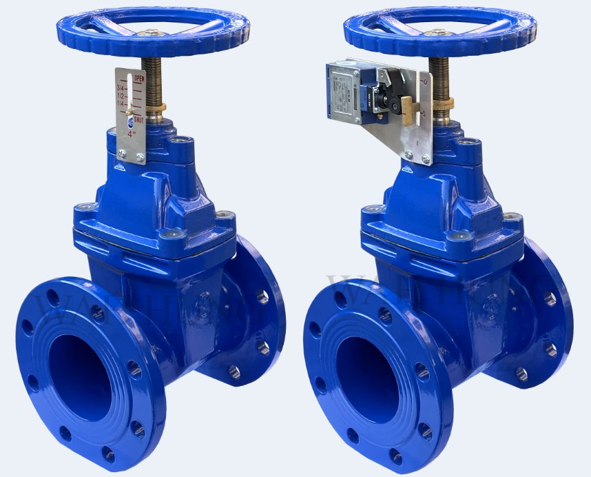 WH010-C Resilient Seated Gate Valve