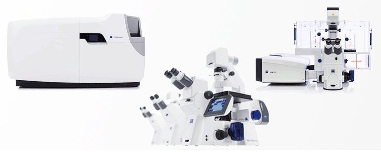 ZEISS 显微镜