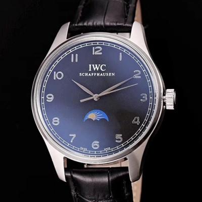 IWC - 3AIWC113