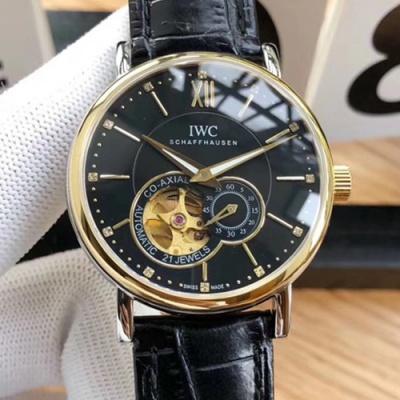 IWC - 3AIWC531