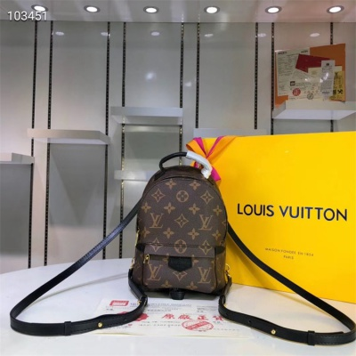 LV Backpack - #M41560 Brown Leather Plamspring PM Mini Size