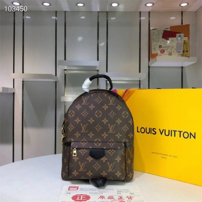 LV Backpack - #M41560 Brown Leather Plamspring PM Small Size