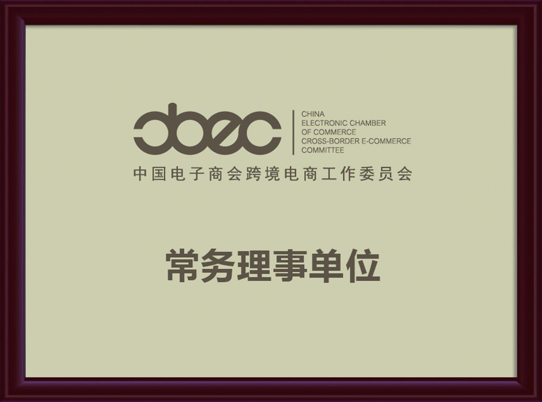 中国电子商会跨境电商常务理事单位