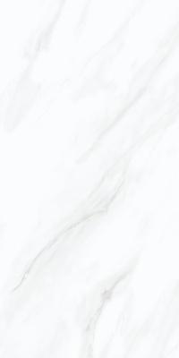 48LY260-爵士白