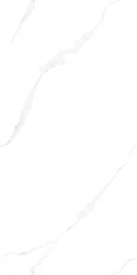 715LV215LW伊利莎白-自由连纹