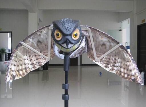 Winged owl  Decoys