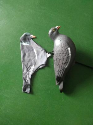 Decoy Pigeon Socks