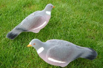 Flocked Wood Pigeon Shell Decoys